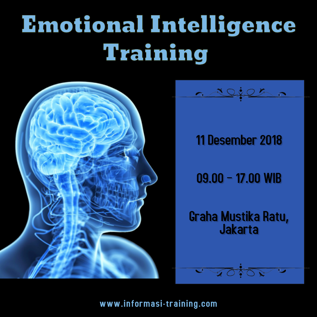 Emotional Intelligence at Work – ALMOST RUNNING